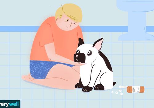 My dog ate my antidepressant