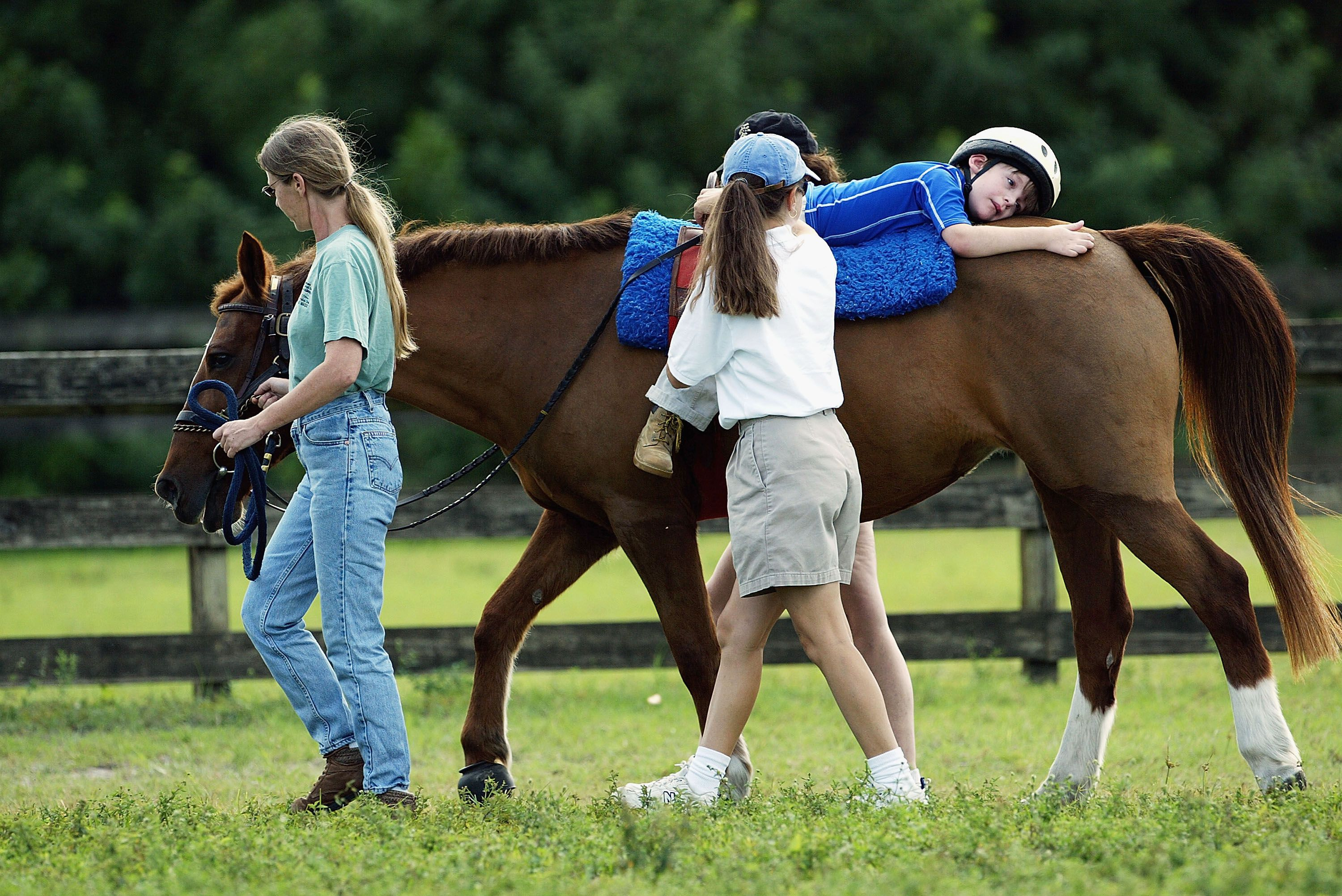 horse therapy essay She would offer therapy to soldiers who had been wounded on the battlefield during world war 1 bringing much attention to her condition and the benefits she gained from riding horses (the.