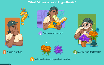 What makes a good hypothesis?
