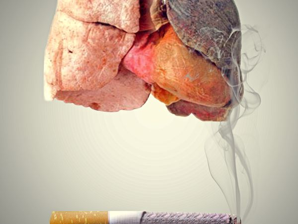photo showing the difference between healthy, normal lungs and smoker's lungs