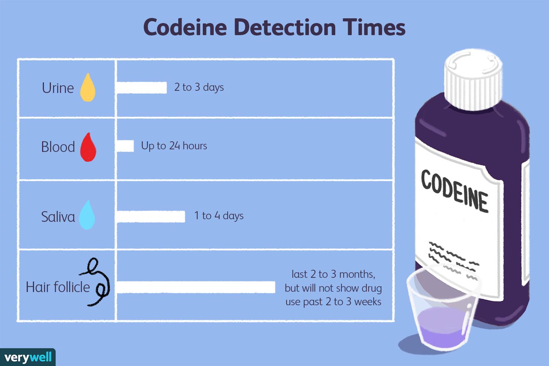 Codeine detection times
