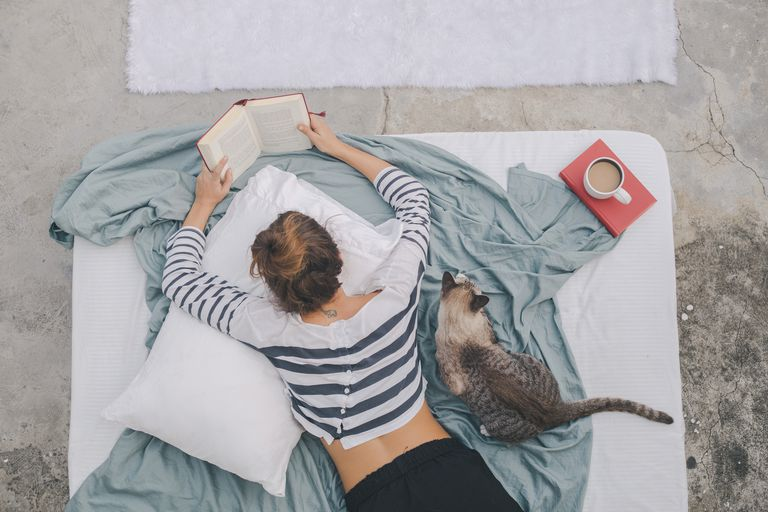 Woman reading at home with cat
