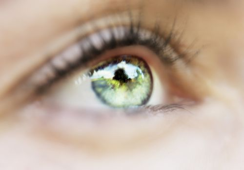 Close-up of a nature scene reflection in a woman's green eye
