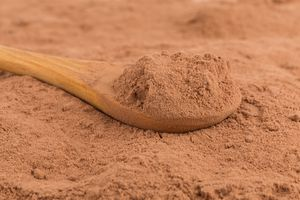 wooden spoon with cacao powder