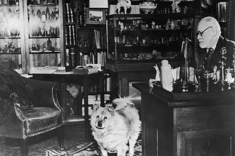 Dr Freud And Dog