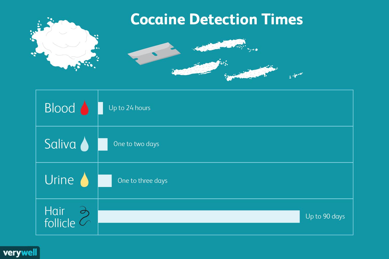 Cocaine detection times