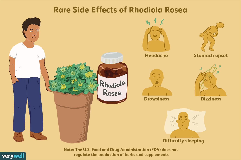 side effects of rhodiola rosea