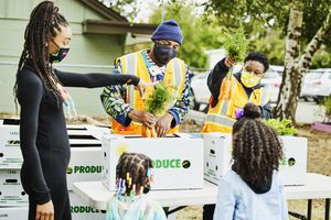 A group of Black children and young adults help distribute produce in their community.