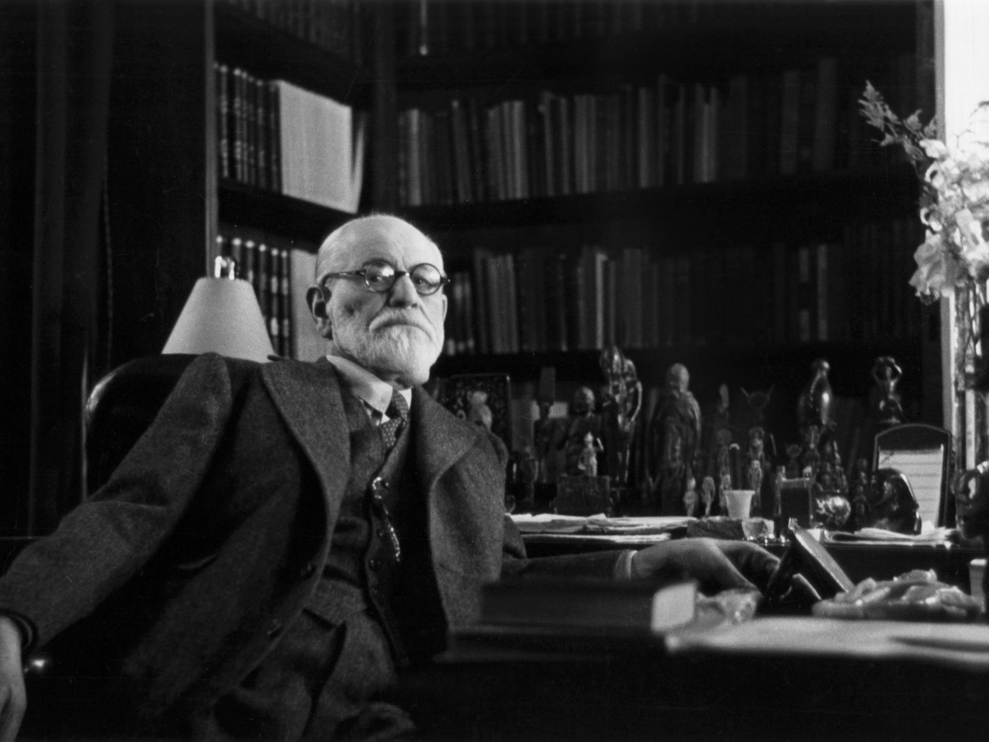 Freud's Theories of Life and Death Instincts