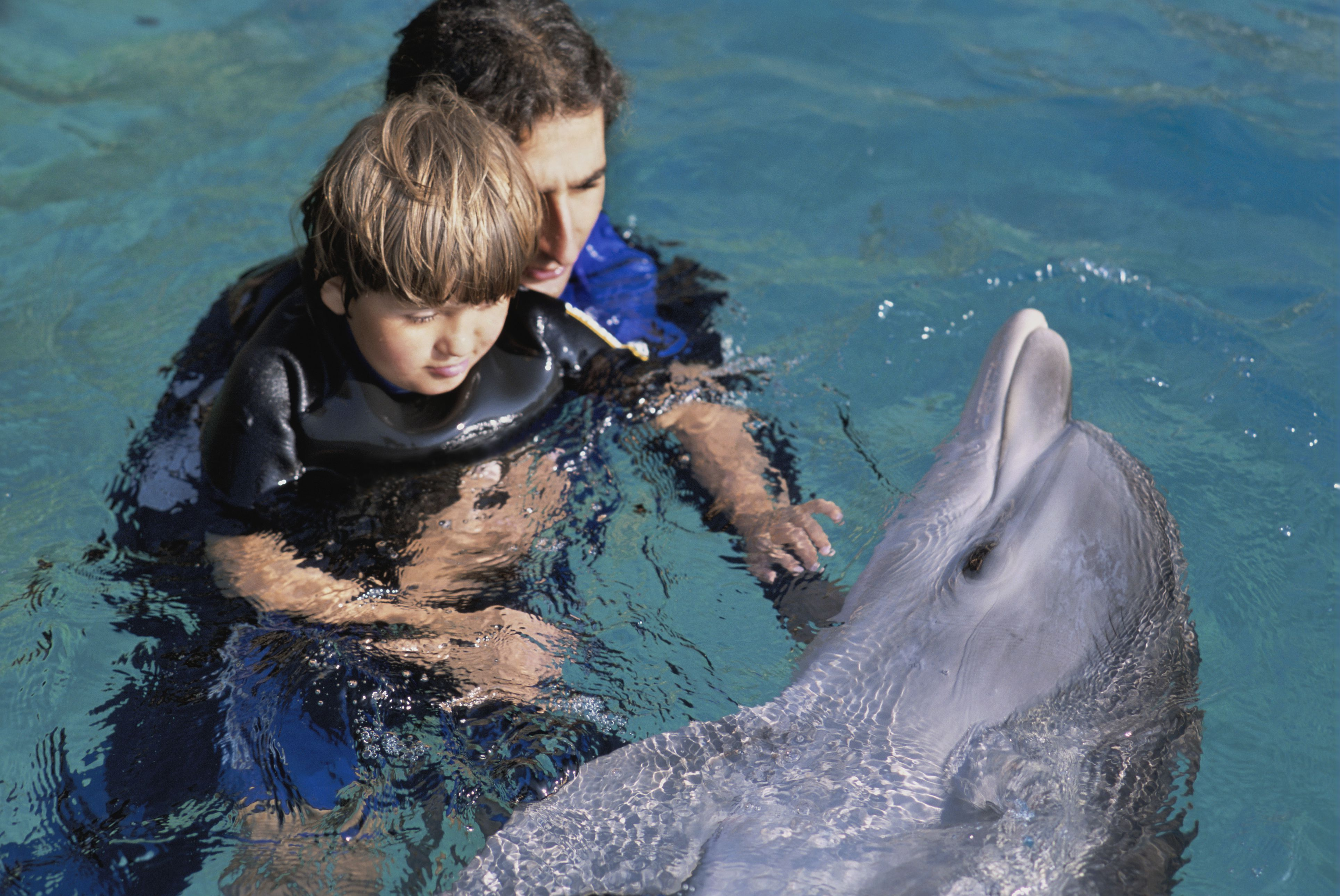 Autistic child receives therapy with dolphin trainer and bottlenose dolphin