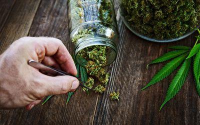 How Long-Term Marijuana Use Affects Memory