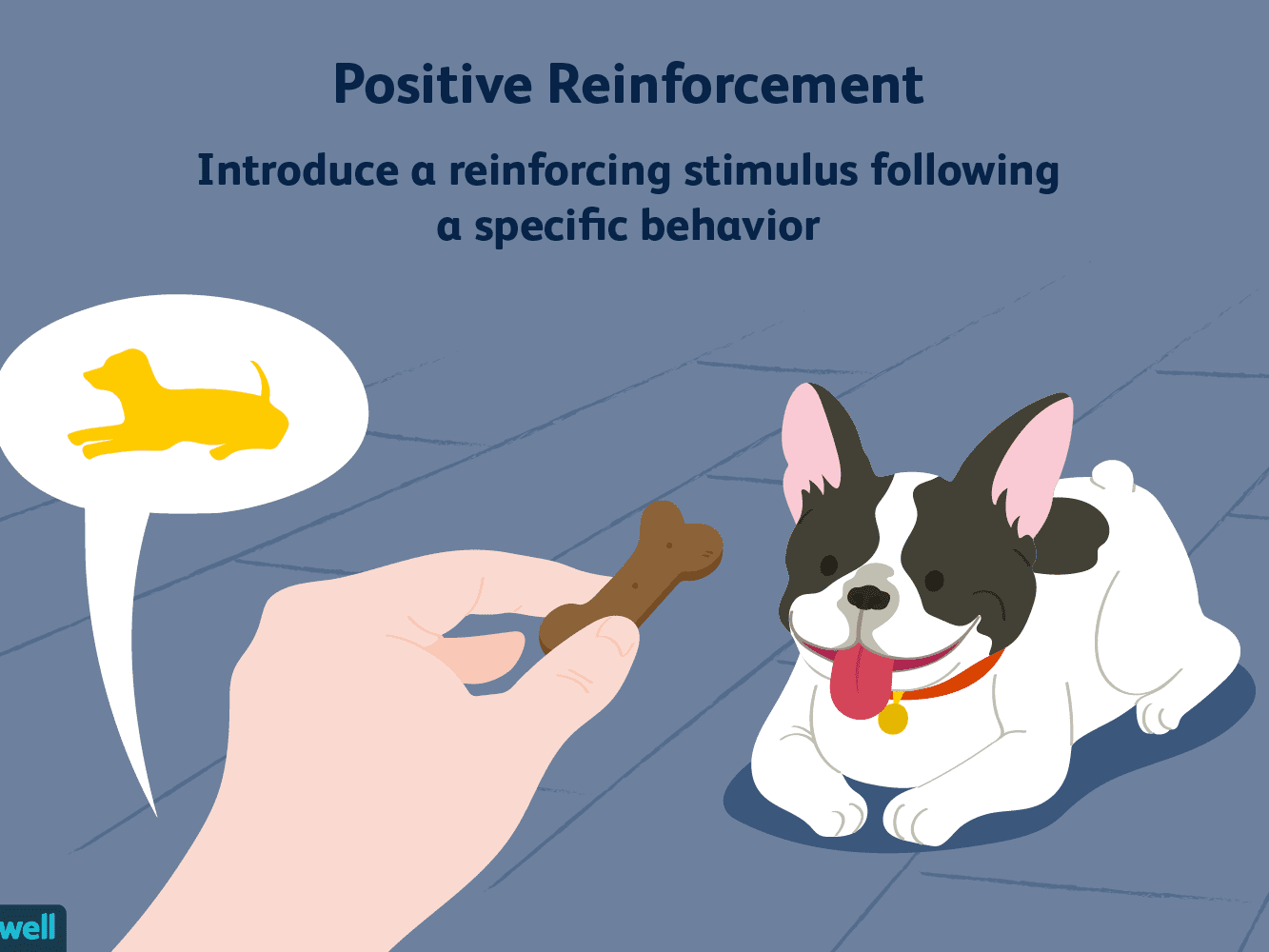 Positive Reinforcement and Operant Conditioning