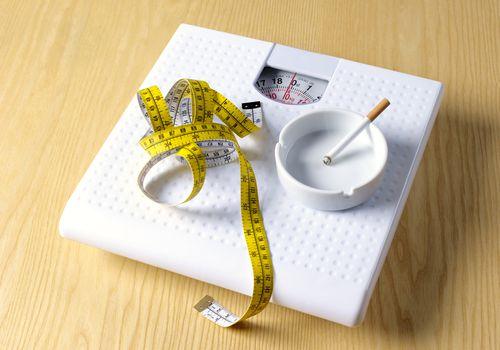metabolism.jpg