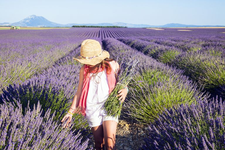 The color purple 39 s impact on your mood and behavior - Colors effect on mood ...