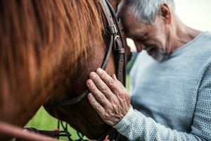 A close-up of senior man holding a horse outdoors.