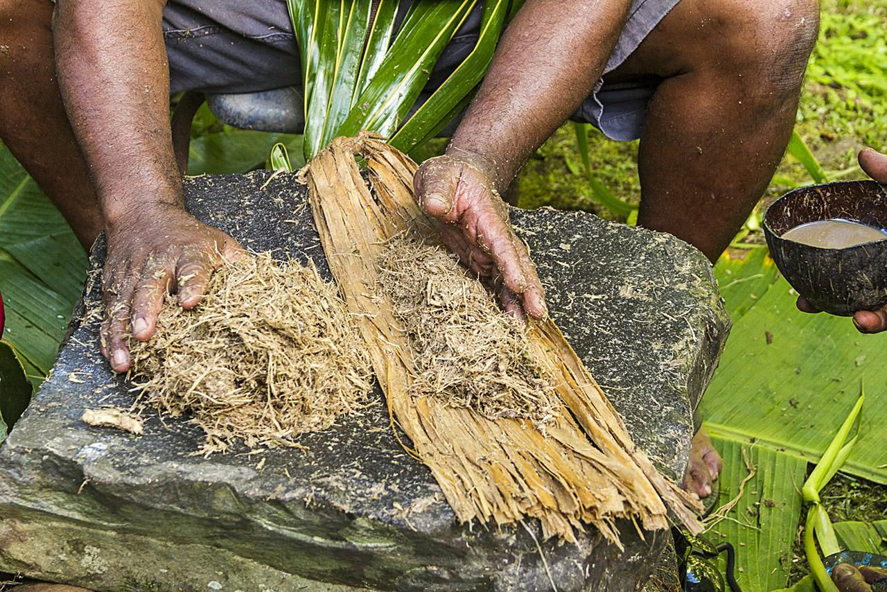 Kava: Benefits, Side Effects, Dosage, and Interactions