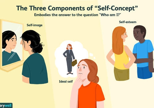 What is self concept?