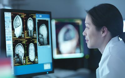 A biopsychologist studying brain scans