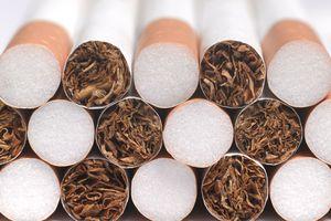 close-up of cigarettes