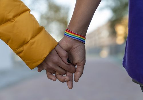 Close-up of two lesbian couple holding hands in a park