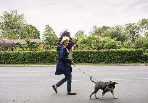 Woman walking with dog on street