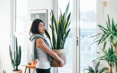 A woman with a content smile carries a large houseplant into her home.