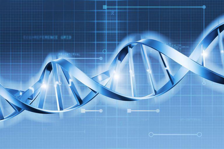Genetic Diagram graphic