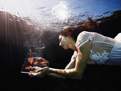 Woman in water holding a clear cube full of goldfish