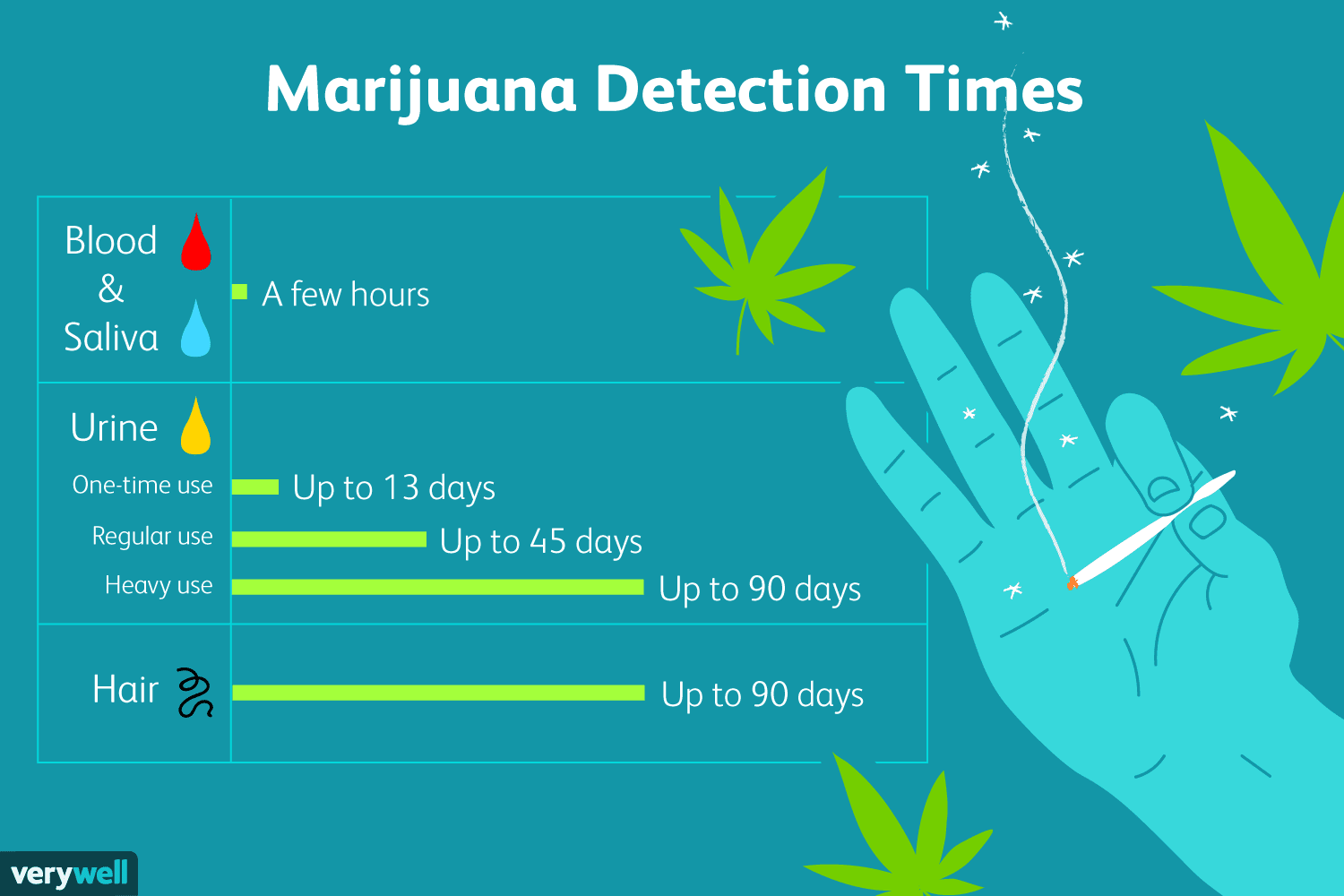 How Long Is Marijuana Detectable In Your System