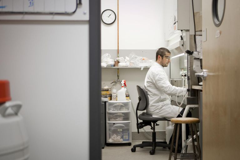 Applied researcher working in lab