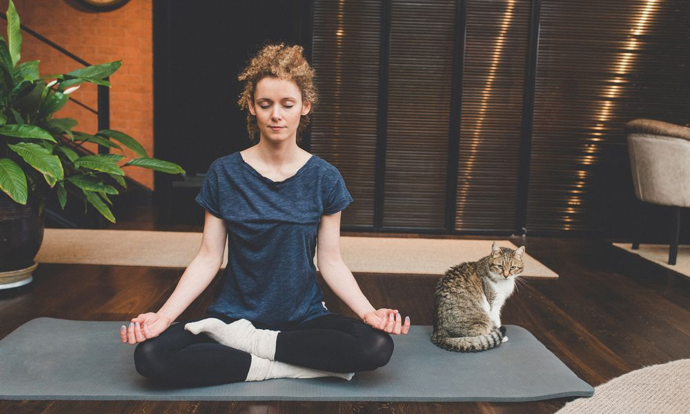 Woman meditating beside a cat.