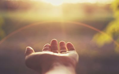 an open hand reaching out to the sun