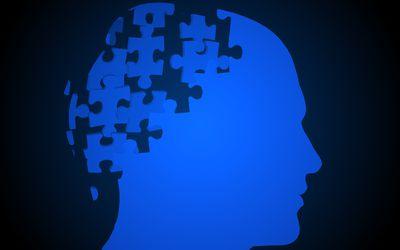 brain as puzzle