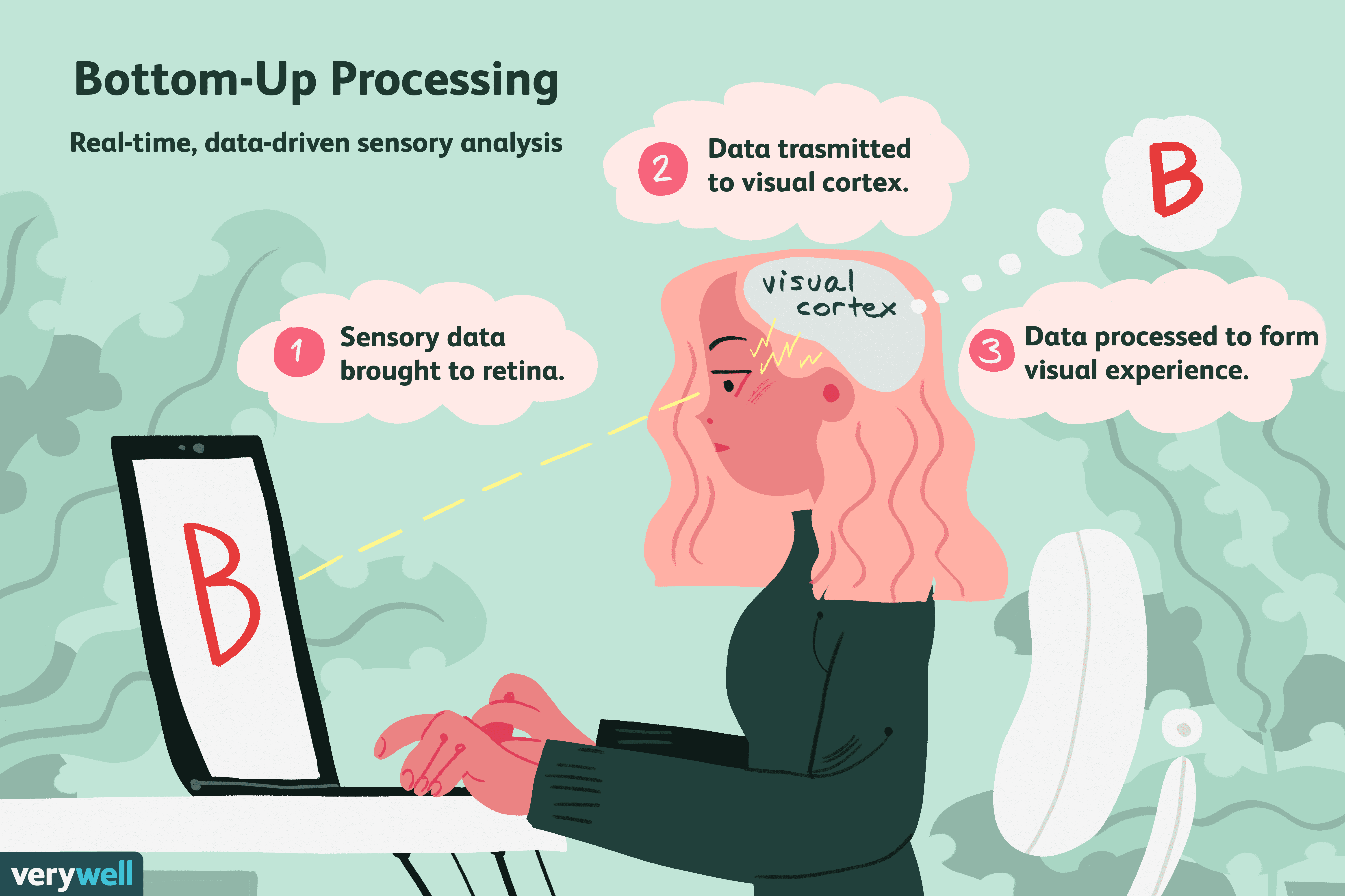 How Bottom Up Processing Works