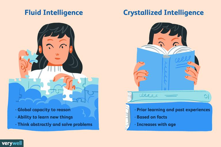 Fluid Intelligence vs Crystallized Intelligence