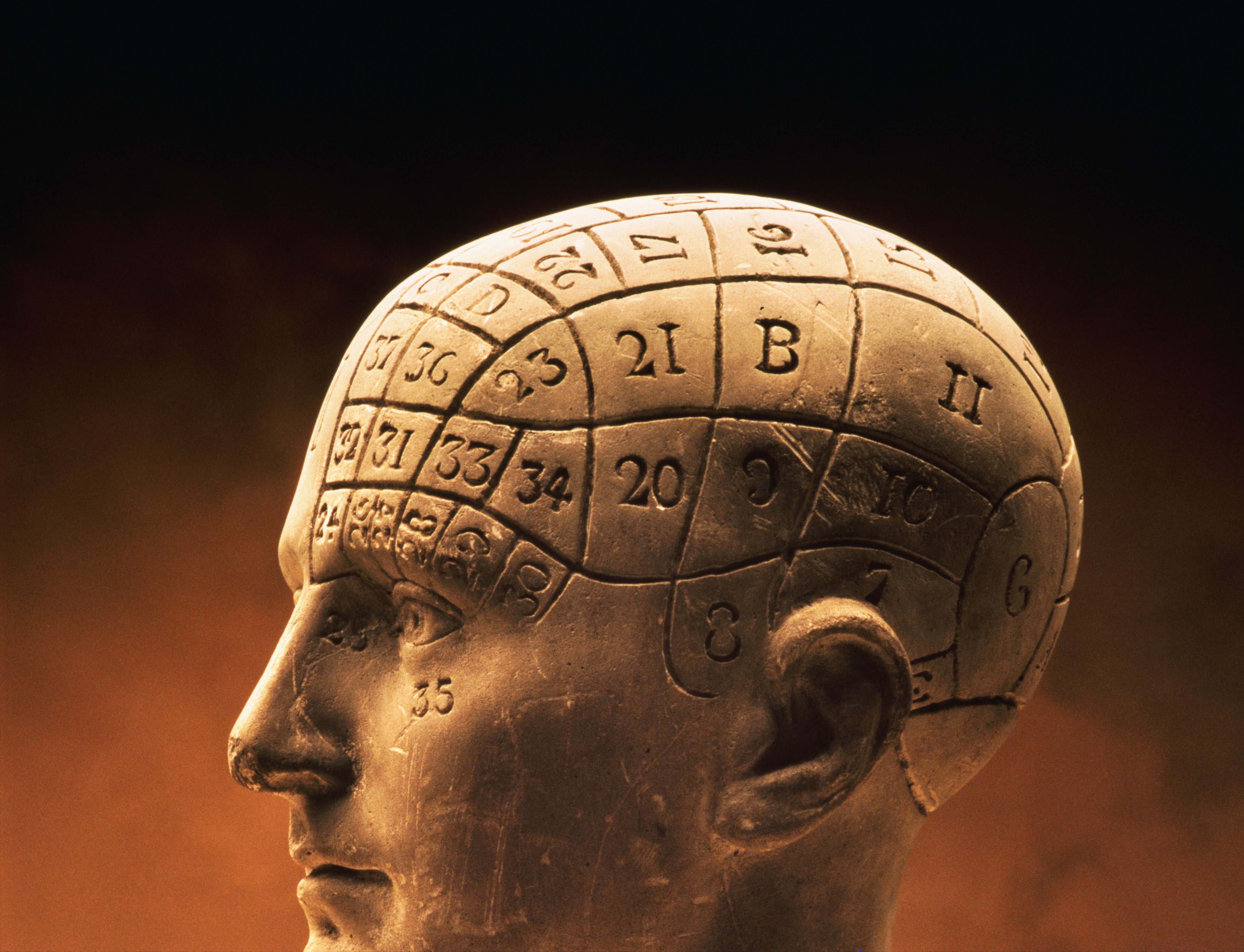 an overview of the history of psychology History of psychology - the book (available from amazon) the story of psychology - audio podcast, narrated by todd daniel note: study guides and practice quizzes are available.