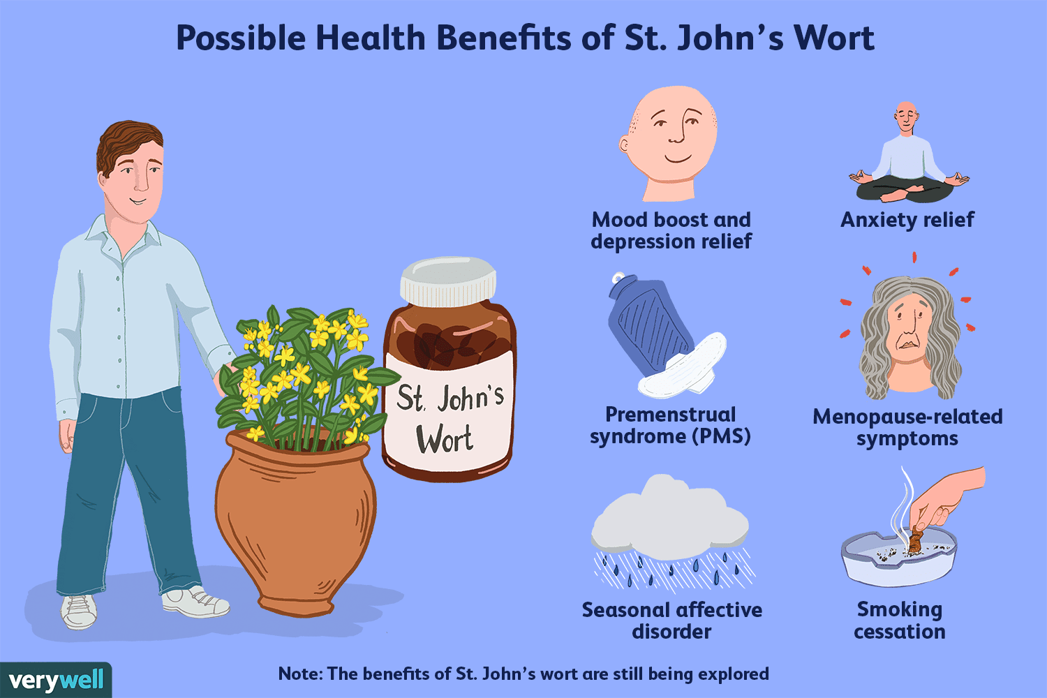 St  John's Wort Drug Interactions With Antidepressants