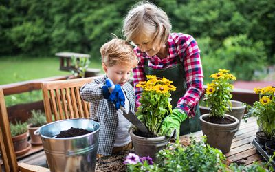 woman with toddler planting flowers outdoors