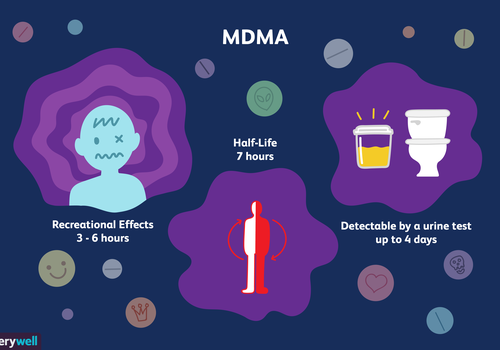 How long MDMA stays in your system