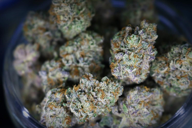 Close Up Of Marijuana Buds