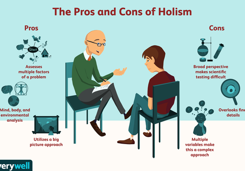 What is holism illustration?