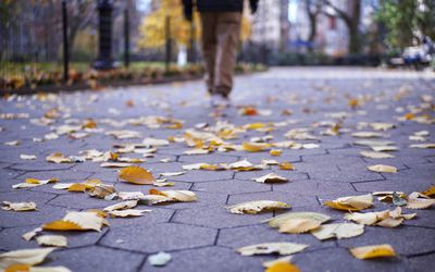 Low Section Rear View Of Man Walking On Footpath By Fallen Autumn Leaves