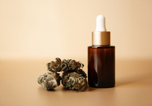 CBD oil bottle next to marijuana flower on a beige background