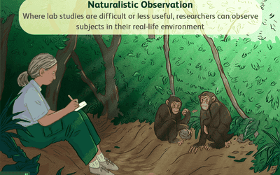 What is naturalistic observation?