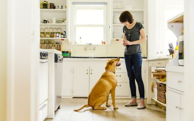 woman rewarding dog for good behavior