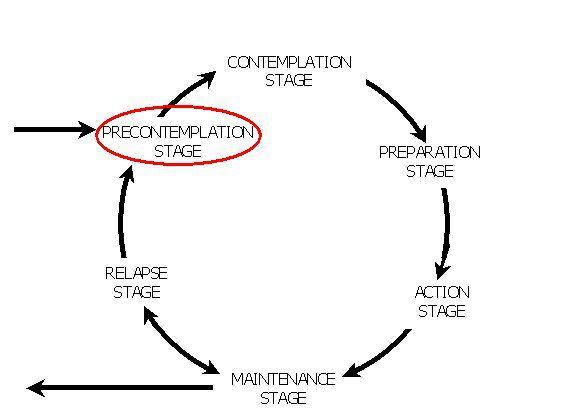 Diagram showing the precontemplation stages in the model