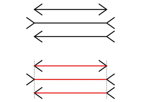 Illustration of the Muller-Lyer Illusion