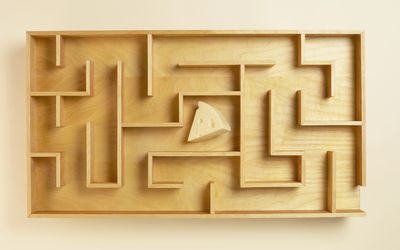 Cheese in the middle of a wooden maze