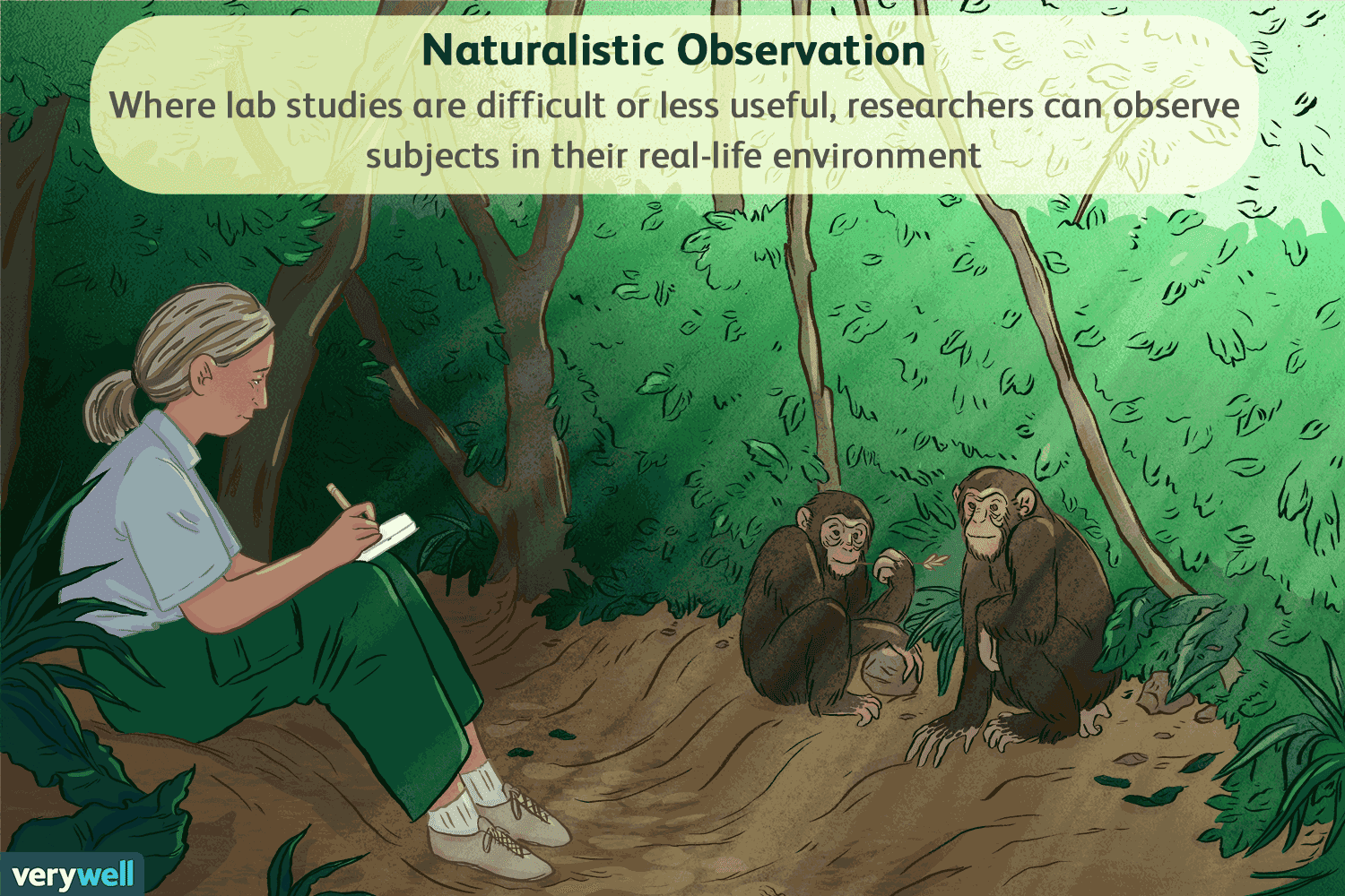 Case Studies Naturalistic Observation And Surveys Are All Examples Of