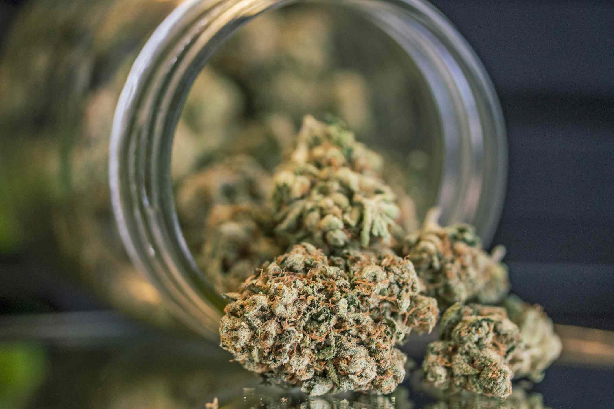 Close up of marijuana in mason jar